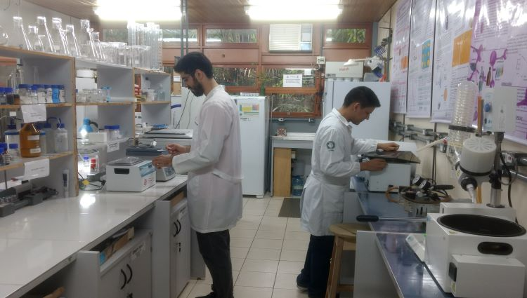Laboratório de Polímeros Nanoestruturados (NanoPol)